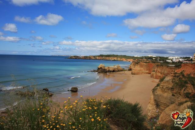Traghetto per le Canarie: Portimao, Madeira e Gran Canaria